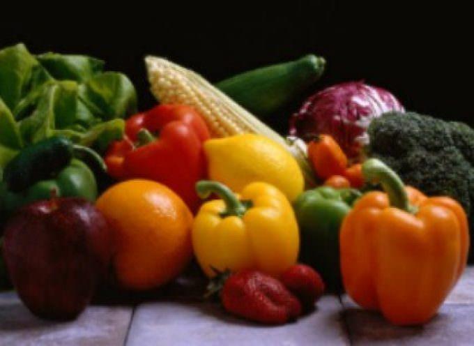 Serve Healthy Vegetable Entrees