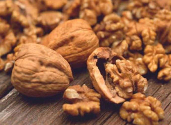 Mangiare fibre riduce il rischio ictus