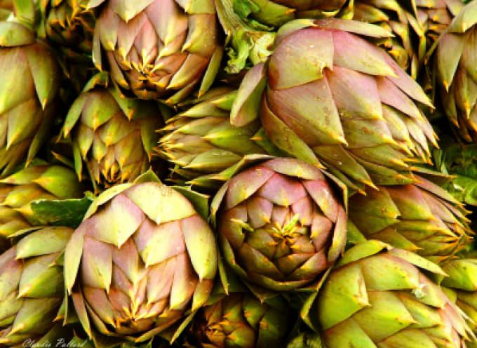 MasielloFood: il custode di carciofini, funghi e olive per Gdo, Do e Ho.Re.Ca