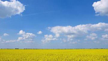 Pavia: In previsione la costituzione di una Commissione per le bioenergie