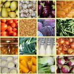 CIBUS 2012: l'intera filiera alimentare a Parma