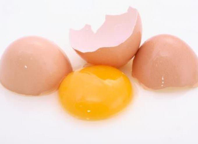 Per fare l'Italia (unita) bisogna rompere le uova