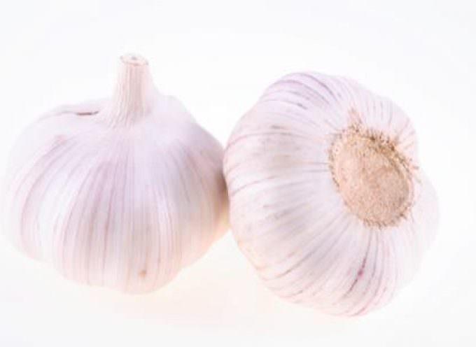 Come per i vampiri, così per il raffreddore: l'aglio combatte le infezioni