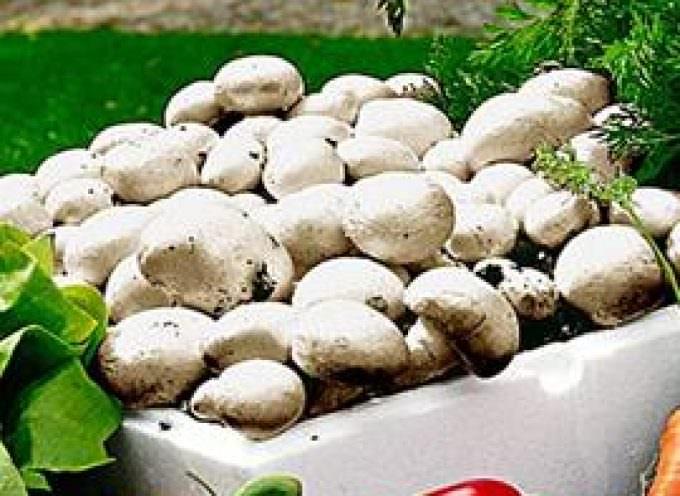 Con verdure e funghi, la salute migliora