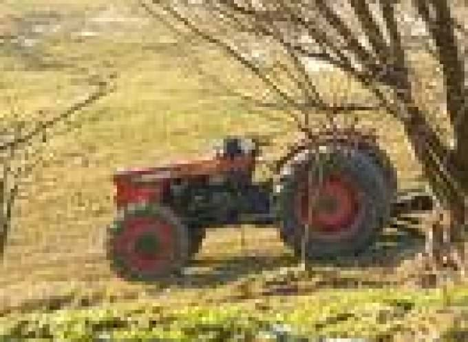 Manovra: Nessun emendamento a favore dell'agricoltura