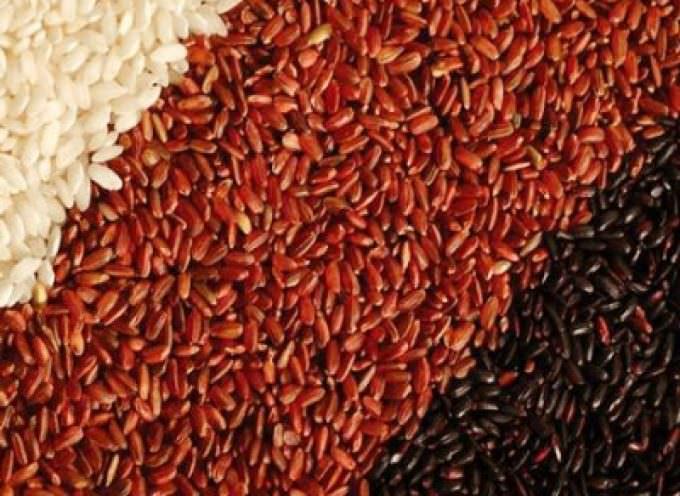 Il colorante per il riso rosso fermentato deve essere autorizzato