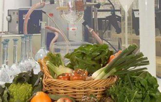 Industria agroalimentare, nel 2012 aumenta il fatturato: 130 miliardi, +2.3% rispetto al 2011