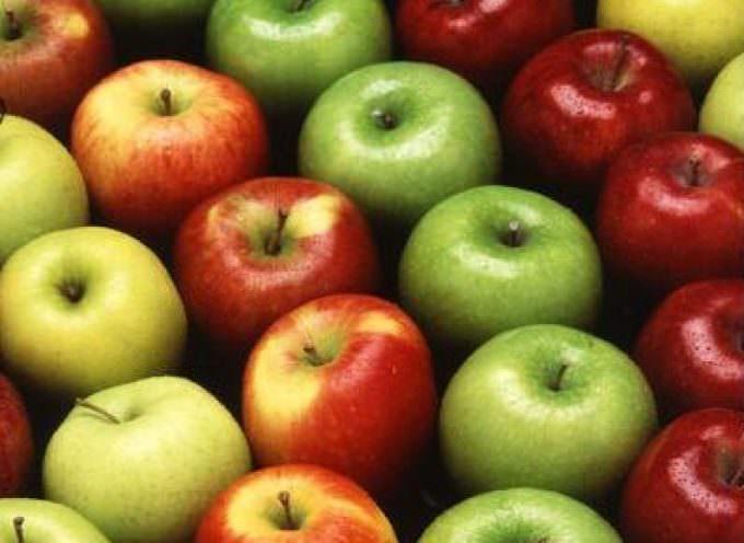Coldiretti: da venerdì 2 ottobre parte l'invito a consumare più mele