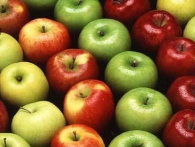 Seminario: Innovazioni nelle tecniche colturali per la regolazione della carica del melo