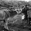 Perché uno spread fra agricoltore Olandese e agricoltore delle Langhe?