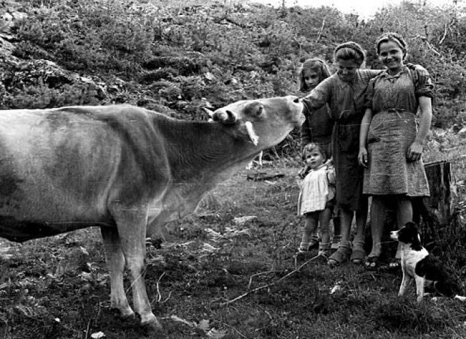 La vita del contadino di ieri, il lavoro pesante di oggi: lettera a Silvana