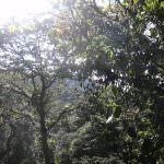 Veneto: Seconda giornata della Biodiversità
