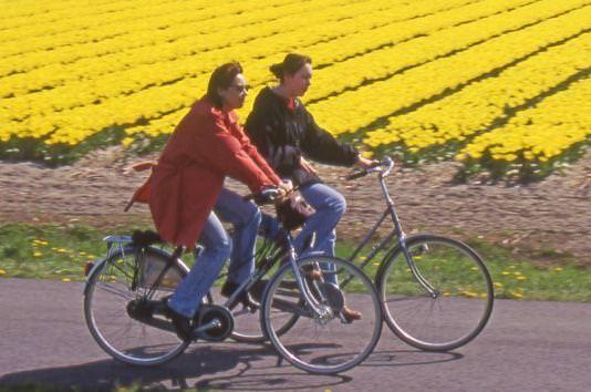 Ambiente: tornano il 19 marzo la «Festa dell'aria» e il concorso per le scuole «Conta i tuoi eco-chilometri»