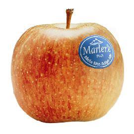 A Breakfest le mele Marlene® insieme a Mulino Bianco per la colazione all'italiana