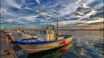 Pesca: Collaborazione tra industrie ittiche e Wwf