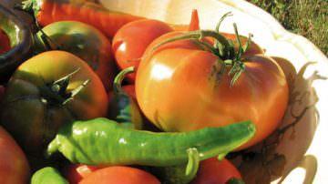 Inflazione: il crollo dei prezzi agricoli riduce i listini alimentari al dettaglio