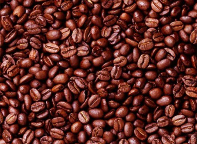 Dal caffè alla zucca. I semi commestibili contro i batteri farmacoresistenti