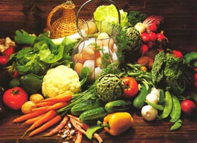 Avvicinare realtà diverse: agricoltura convenzionale, integrata e biologica