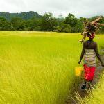 Vertice mondiale: rilanciare l'agricoltura per porre fine alla fame