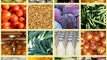 Agricoltura, crescono i prezzi: +2,7% ad ottobre