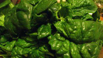 """Noci, spinaci e fagiolini: la dieta """"verde"""" contro asma ed allergie"""