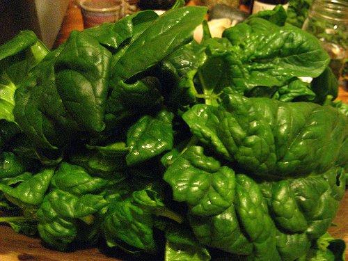 Batterio killer, il precendente americano degli spinaci