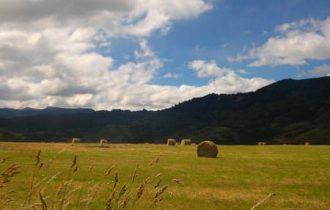 Agricoltura: la biodiversità è la scelta migliore