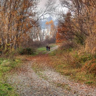 Vercelli: Un progetto per incentivare il turismo sostenibile nelle aree rurali