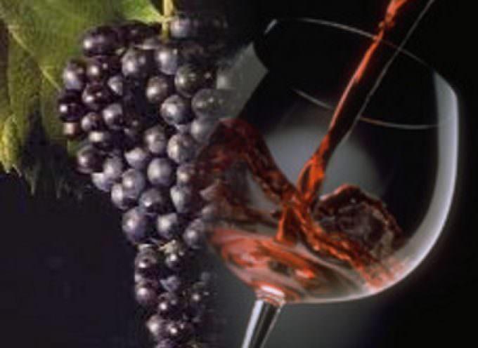 Candia: Eva Vernazza, la signora della viticoltura eroica