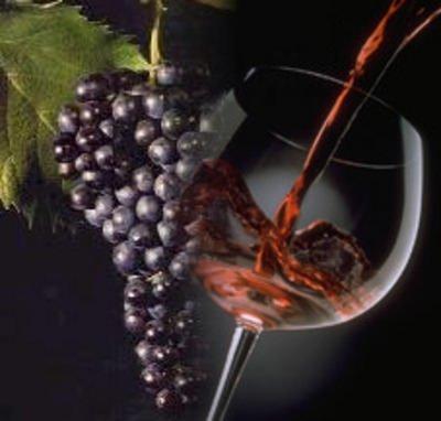 Vino: DOCG per Amarone e Recioto della Valpolicella