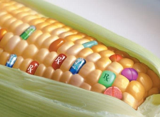 """Si agli OGM, si agli agrofarmaci. """"Pane e pace"""", di Antonio Pascale"""