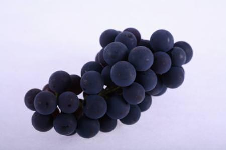 Il succo d'uva aiuta contro i vuoti di memoria