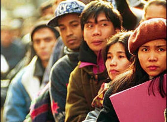 Immigrazione, partita l'operazione per le domande degli 80 mila stagionali