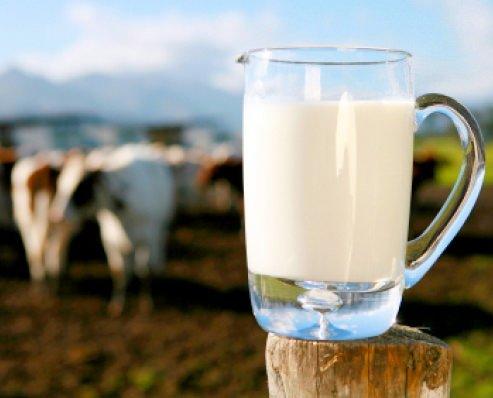 Latte: un bicchiere migliora la memoria e combatte lo stress