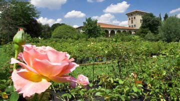 Apertura primaverile di Castello Quistini – Tra Rose, Storia e Leggenda