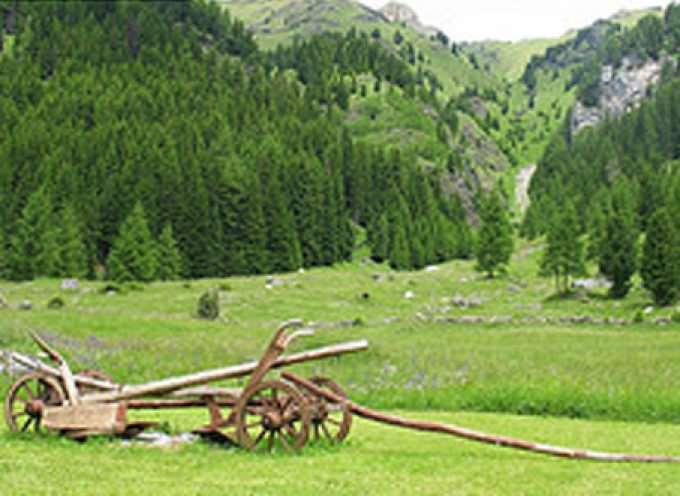 Bruxelles: Apertura del Forum dell'agricoltura montana