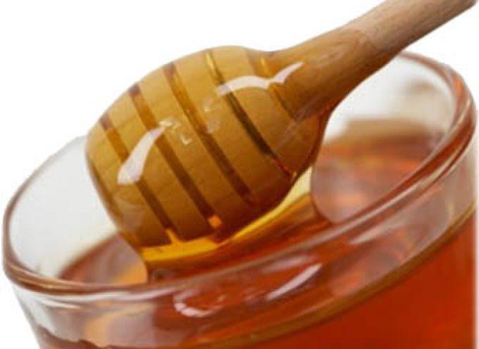 Appuntamento in tutta Italia il 7 dicembre con la prima Giornata Nazionale del Miele