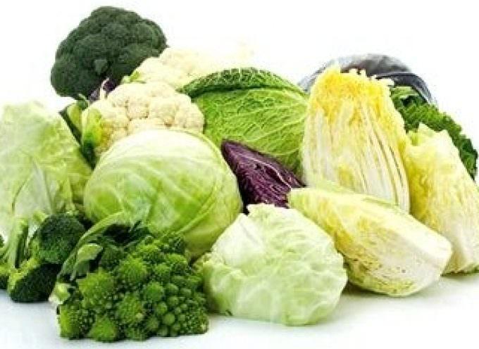 Brassicacee: cavoli, broccoli & Co., un pozzo di salute
