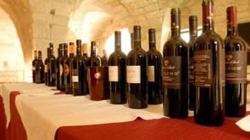 A Vinitaly 2009 trionfa il vigneto Puglia