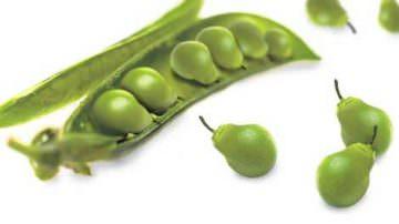 """Coldiretti: """"In diminuzione le semine Ogm in Europa"""""""