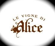 Cinzia Canzian e le Vigne Di Alice…