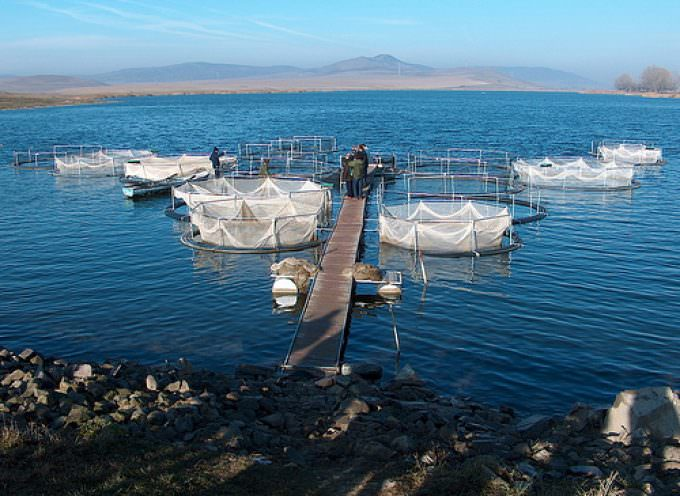 Sicilia: Cooperazione tra Università di Trapani e ricercatori dell'Oman