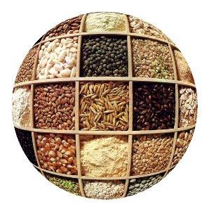 Cereali in campo con il Consorzio Agrario di Parma