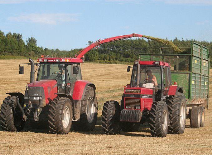 Agricoltura: Diminuiscono gli infortuni sul lavoro