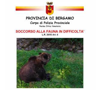 Bergamo: Rapporto 2008 sul soccorso alla fauna in difficoltà