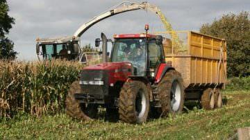 """FAO: Confagricoltura, puntare sulle """"vere"""" imprese agricole"""