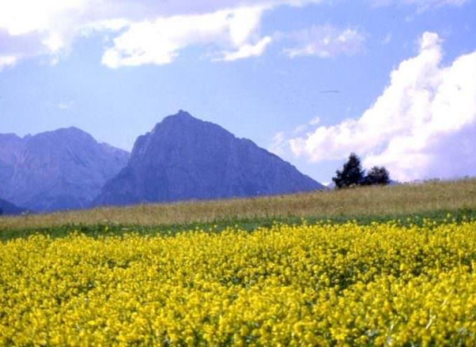 Orsara difende la sua biodiversità