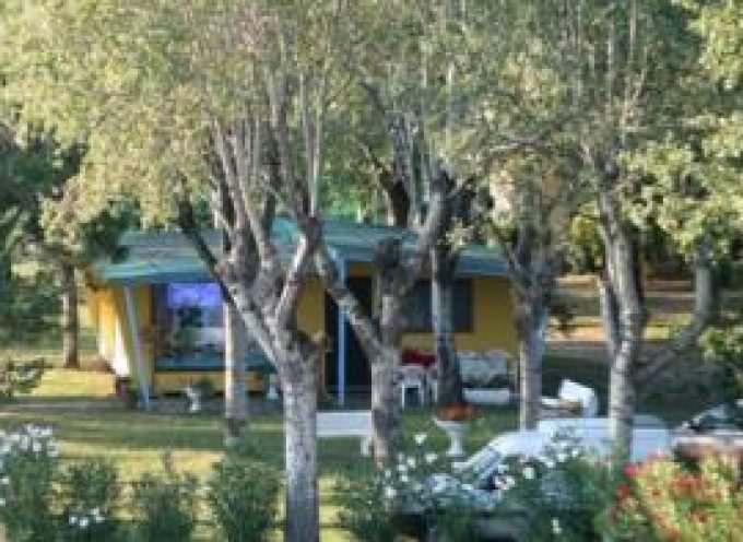 Lido di Spina, Comacchio (FE): Turismo – Perché non godersi una meritata vacanza di relax immersi nel verde?