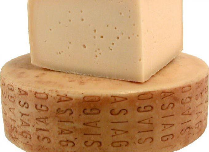 Il formaggio Asiago approda al Festival di Venezia