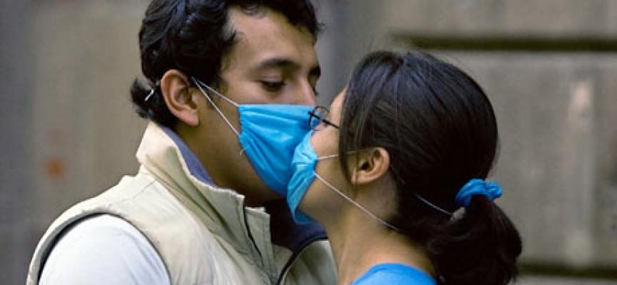 Influenza suina, l'Oms alza l'allarme a livello 5